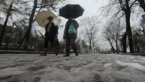 Мартовская погода установится вевропейской части России