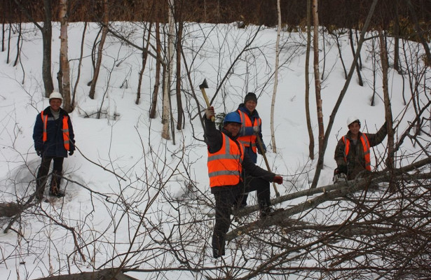 Власти Сахалина запретили мигрантам работать настройках