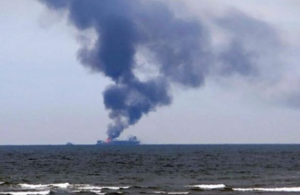 ВБалаклавской бухте зафиксировано нашествие медуз