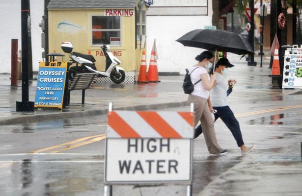 Мощные иужасные: ураган «Эта» атаковал США, тайфун «Малаве»— Филиппины