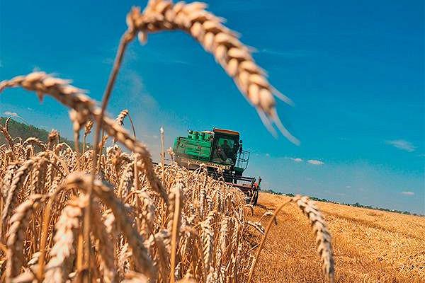 Россия с1марта повысит пошлину навывоз пшеницы