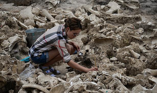 Останки древних хищников нашли вкрымской пещере