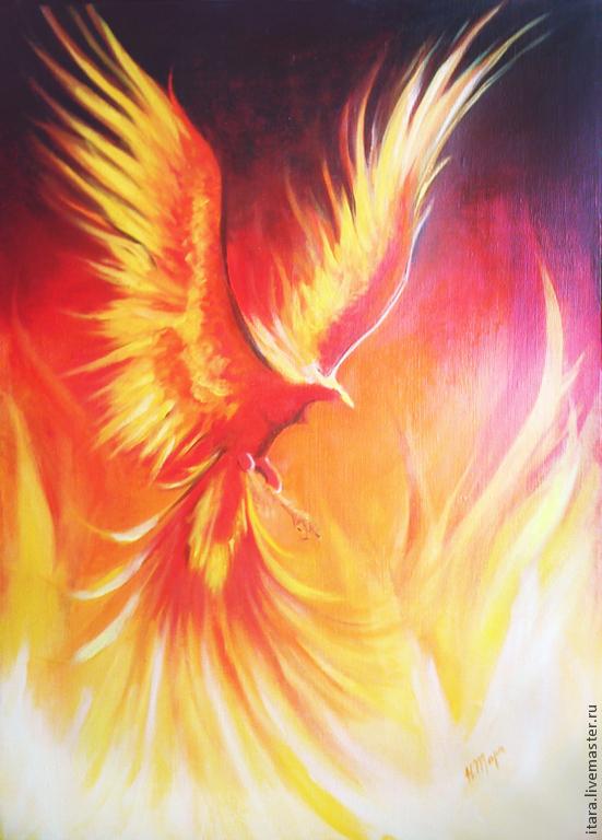 Loanfin phoenix