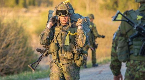 Швеция предложила Финляндии отступить в«войне» сРоссией
