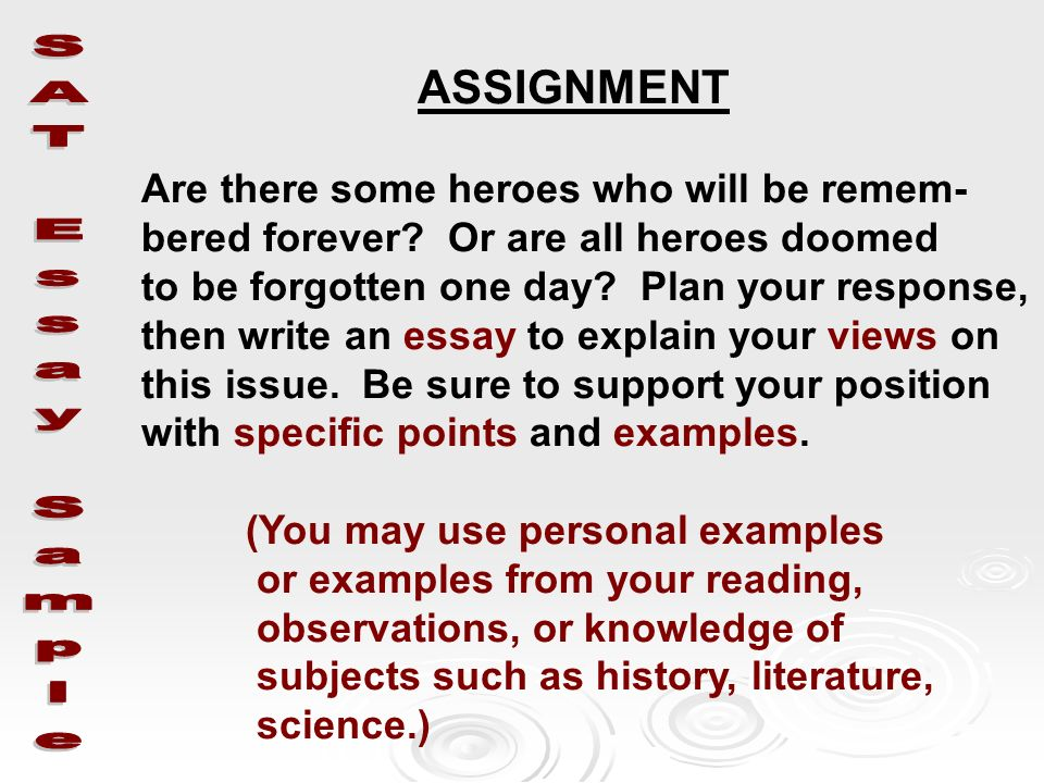 Essay about heroes examples