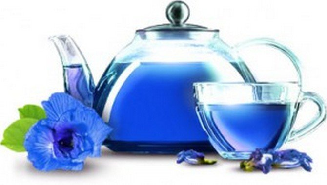 Пурпурный чай чанг шу оптом вред