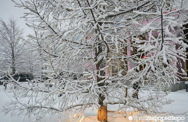 Синоптик назвала причину лютого холода насевере Свердловской области