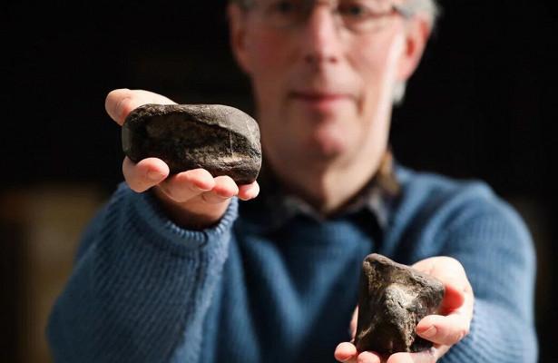 ВИрландии впервые найдены останки динозавров