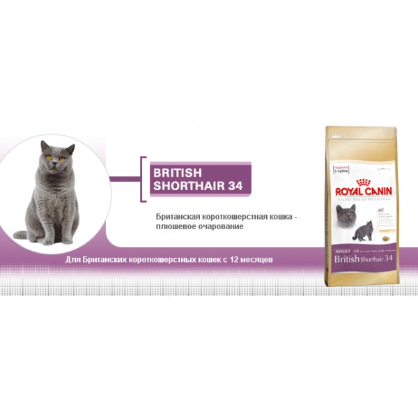 Корм royal canin для котят британских короткошерстных
