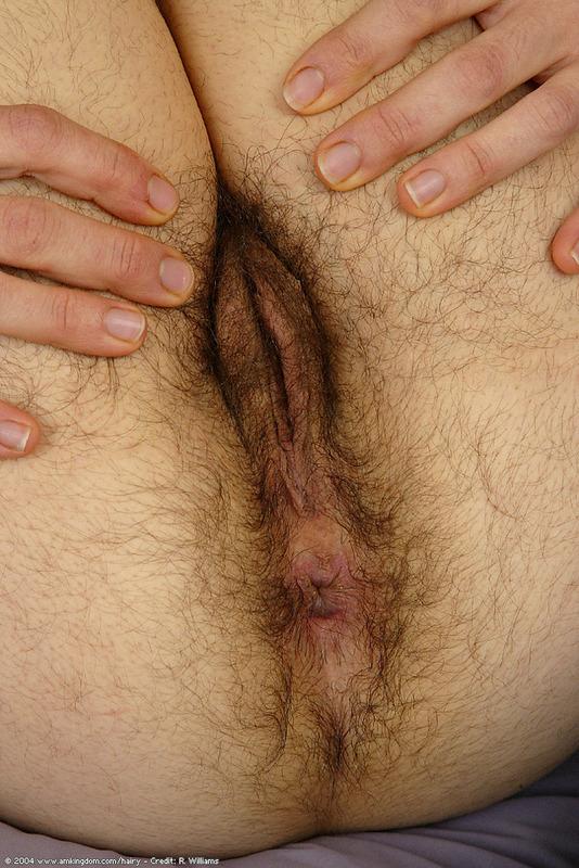 Colt pounder anal toy