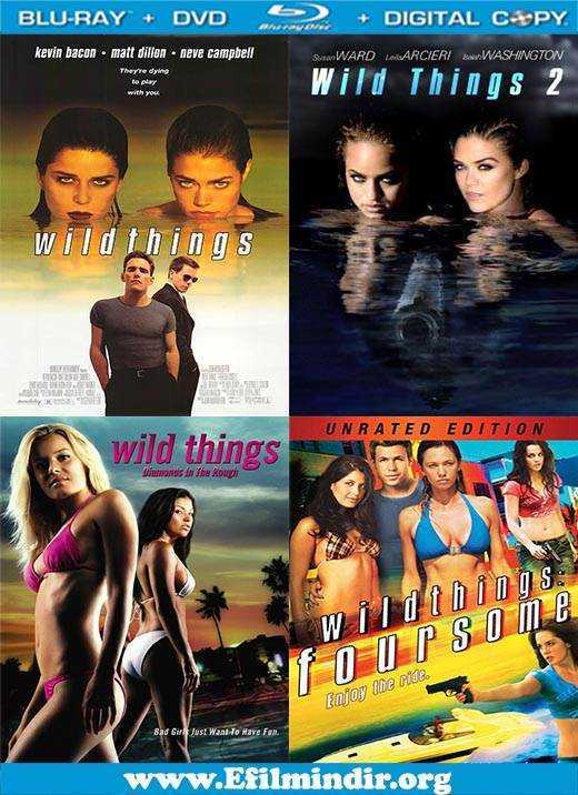 Watch Wild Things Foursome Movie Online