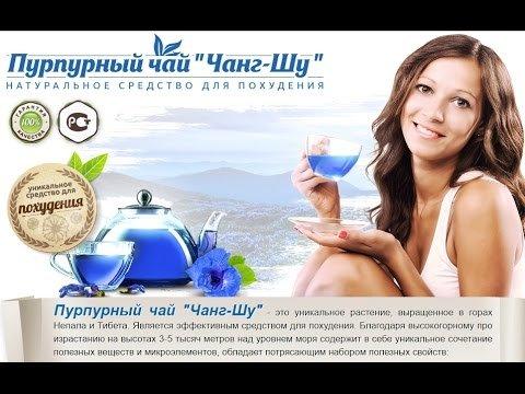 Как принимать пурпурный чай чанг шу где купить в новосибирске
