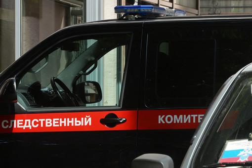 «Прет естество»: москвич годами насиловал детей
