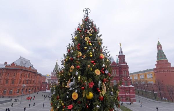 ВМоскве установили новогоднюю елку