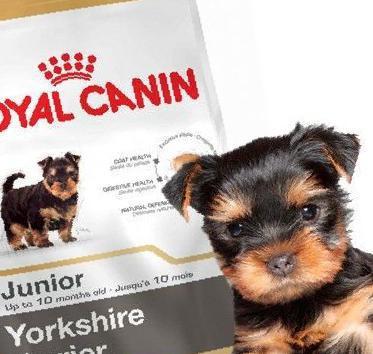 Корм royal canin terrier 29 junior