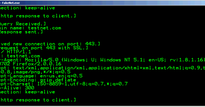 Penetration test shareware network