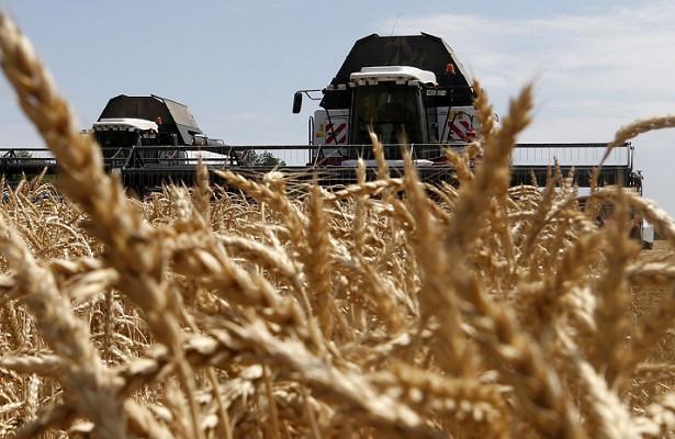 Мишустин заявил орекордном урожае зерна