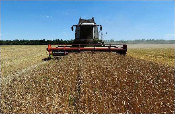 Минсельхоз предлагает поднять пошлину наэкспорт пшеницы