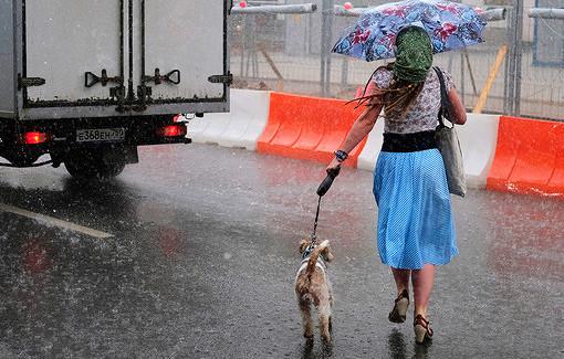 Синоптики предупредили обопасной погоде вряде регионов РФ