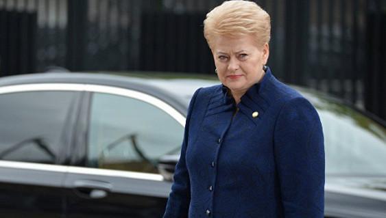 12декабря Украинское государство посетит президент Литвы Даля Грибаускайте