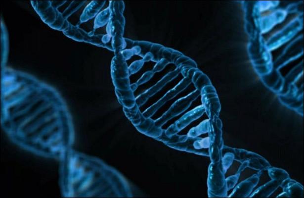 Специалисты нашли гены, повышающие риск шизофрении