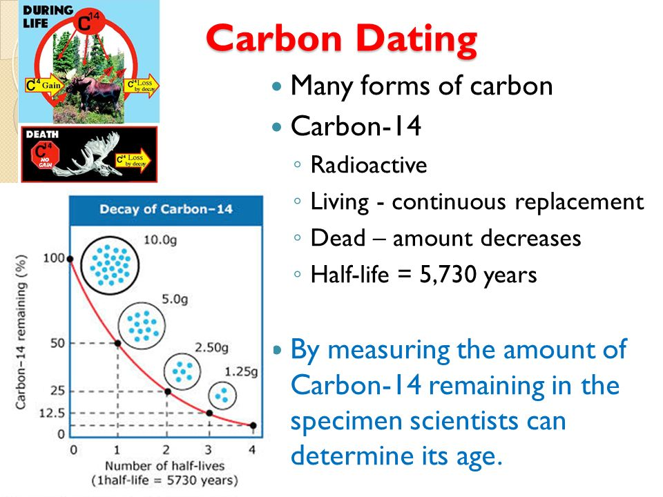 Carbon dating companies