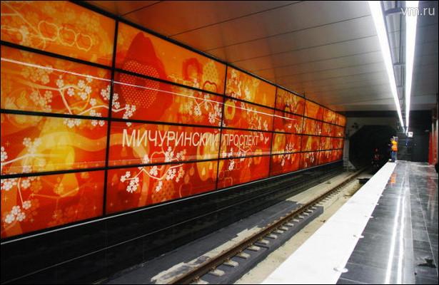 Путевые стены расскажут историю биолога