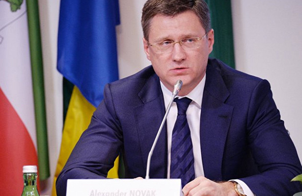 Новак встатусе вице-премьера будет курировать отношения сОПЕК
