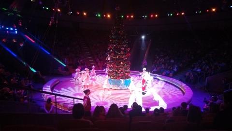 Премьера новогоднего шоу«Джамбо» состоялась вНижегородском цирке 23декабря