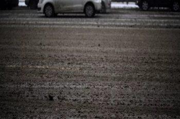 Курганцы устали отреагентов: город утопает вгрязи