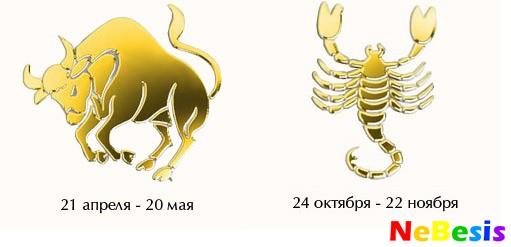 Гороскоп лев женщи  и скорпион мужчи  совместимость