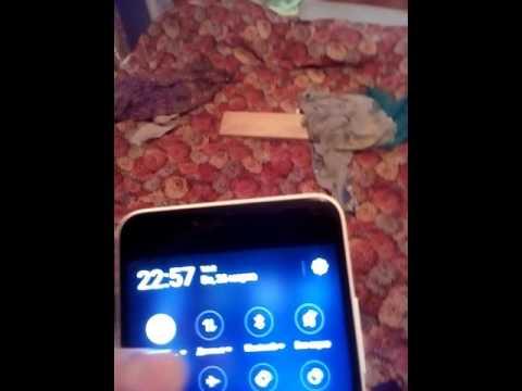 Куда пропали телефоны meizu с алиэкспресс