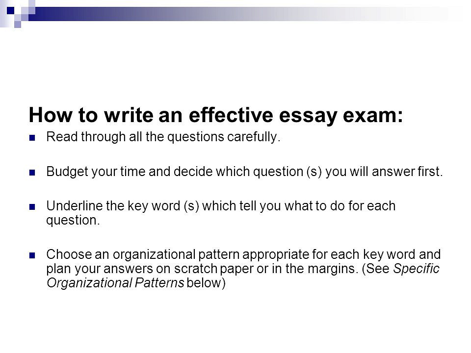 How to write an essay plan in an exam