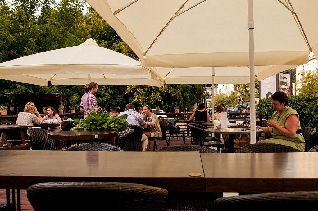 Ресторан 1516 - фотография 16