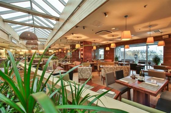 Ресторан Terrassa - фотография 16