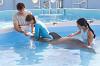 История дельфина 3D (Dolphin Tale)