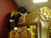 Республика кошек (Представительство Музея кошки)