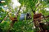Веревочный парк «Панда»