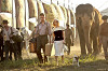 Воды слонам! (Water for Elephants)