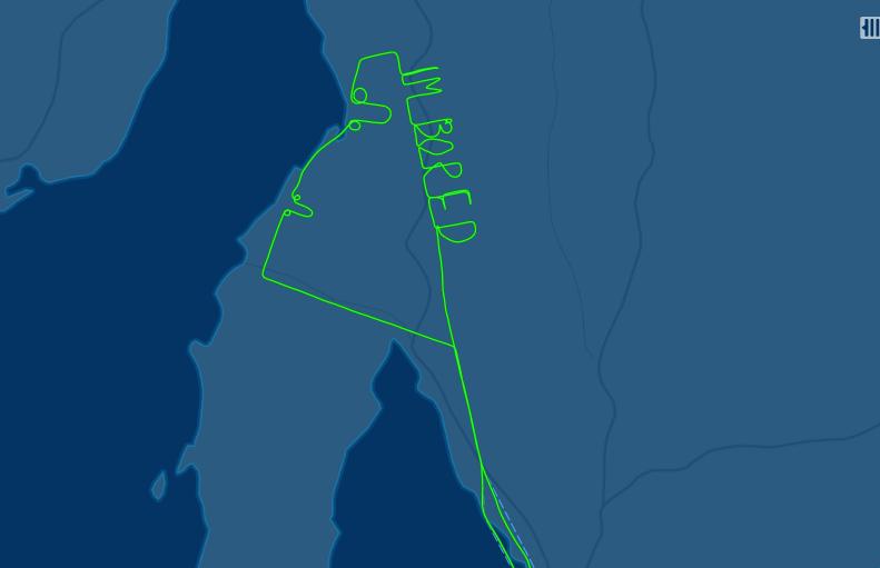 От скуки пилот нарисовал пенисы