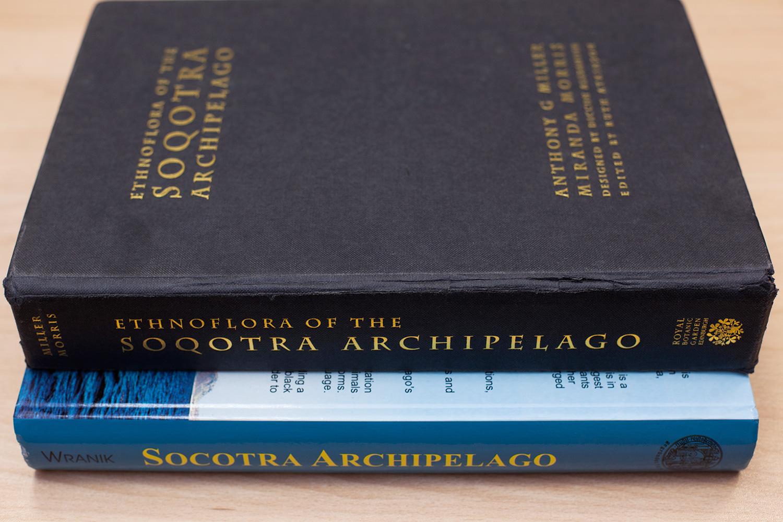 Сейчас про Сокотру есть достаточное количество литературы — но, к сожалению, не на русском