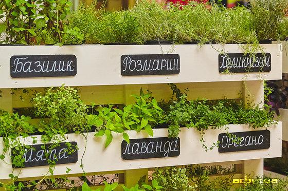 Фото даниловский рынок