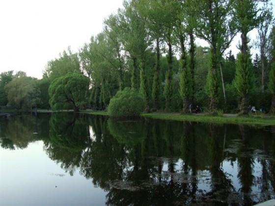 Фото парк Дендрарий