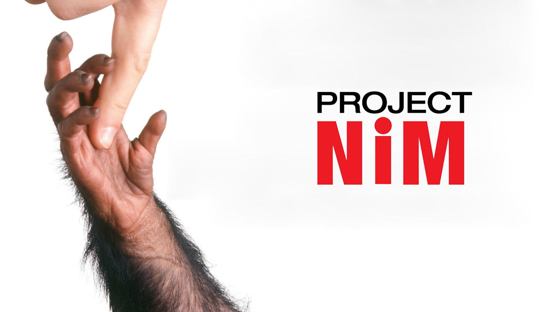 Проект «Ним» смотреть фото