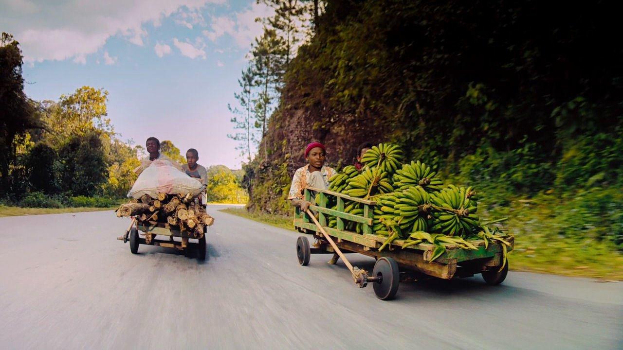 Остров лемуров: Мадагаскар смотреть фото