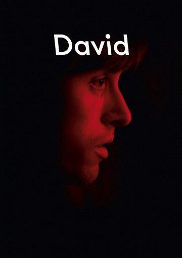 Постер Дэвид