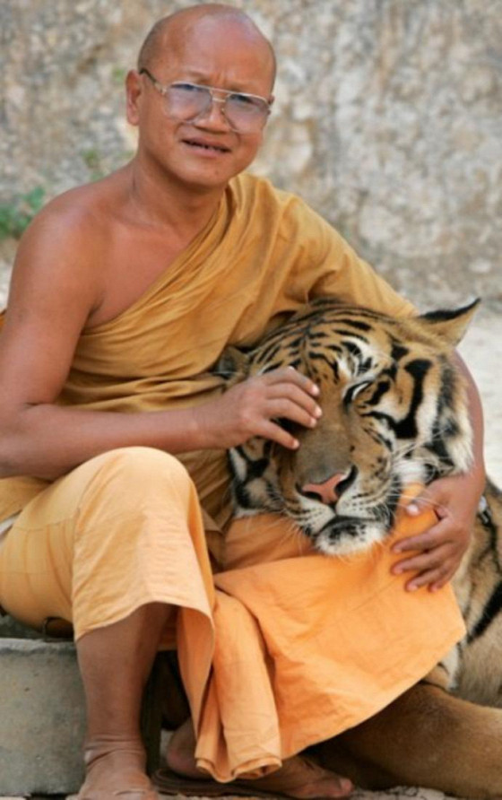 Тигр и монах (The Tiger and the Monk)