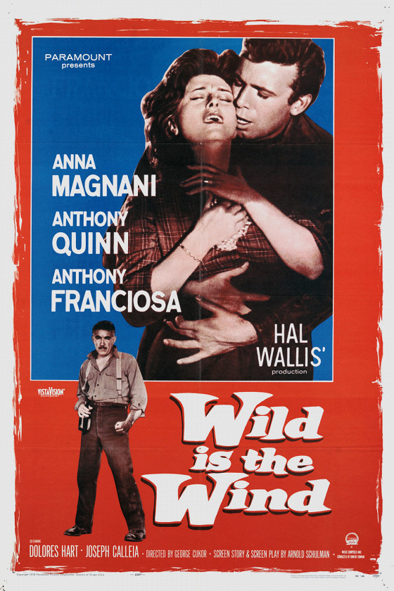 Дикий ветер (Wild Is the Wind)