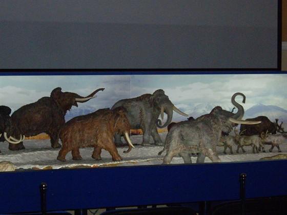 Музей-театр «Наш Ледниковый период»