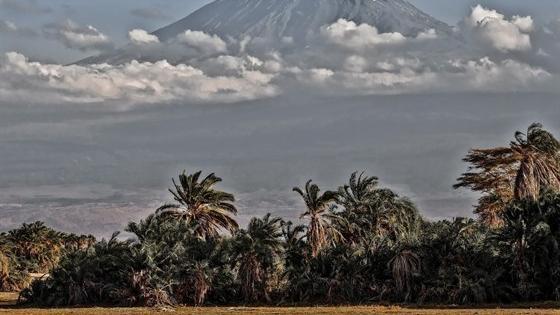 День Танзании